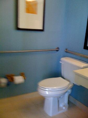 Hyatt Place Greensboro: Bathroom - another look