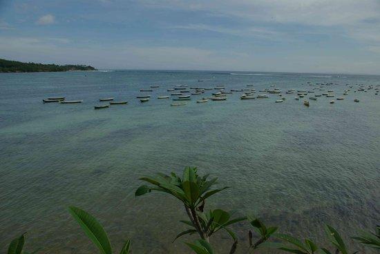 نوسا ليمبونجان, إندونيسيا: Looking back at Secret beach & surf