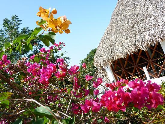 Camino Real Tikal: ホテル内の様子
