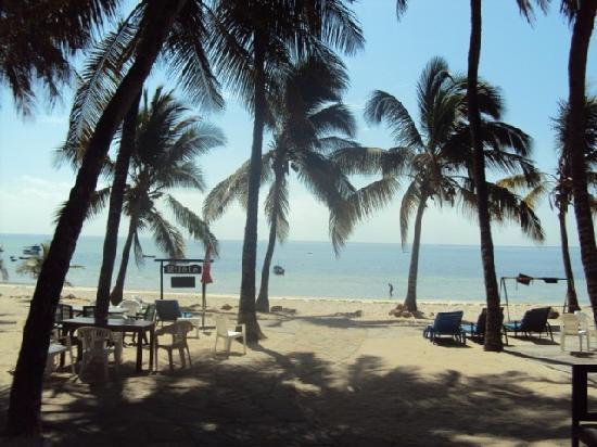 Milele Beach Hotel: Beach