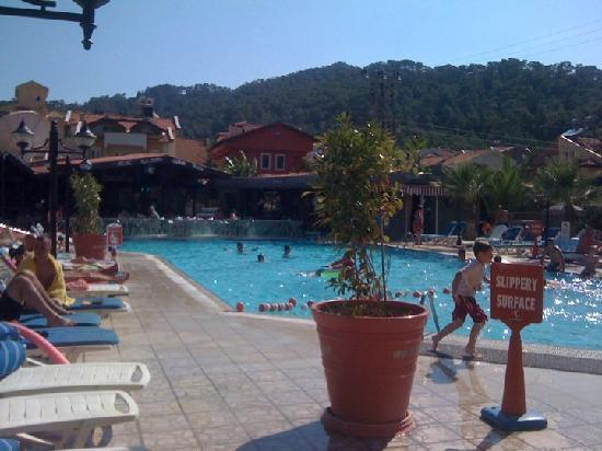 Club Alpina Apartments Hotel: Taken from my sunbed!