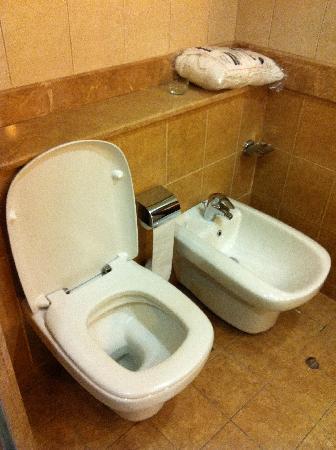 Al Rawda Arjaan by Rotana: toilet