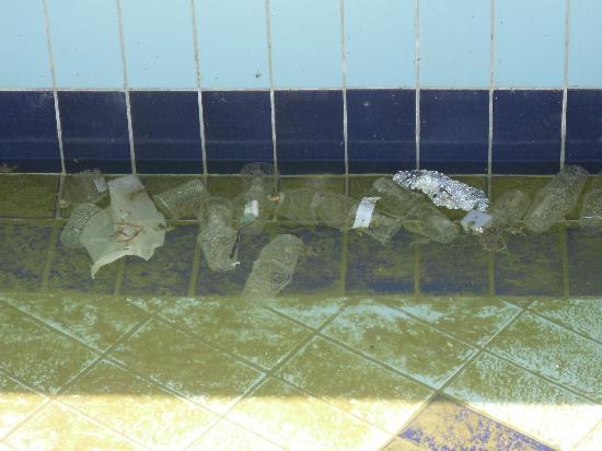 Regency Plaza Aqua Park & Spa Resort: Litter in the lazy river