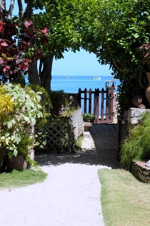 Norm's Place: View from the garden