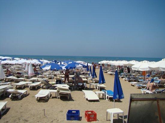 Dosi Hotel: plage de l hotel