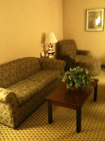 Wingate by Wyndham Atlanta Norcross: suite at wingate