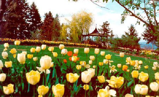 Gardens, Kalispell, Montana