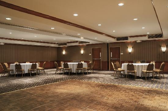 Gateway Hotel Dallas: Banquet Area/Conference Area