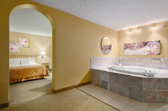 Gateway Hotel Dallas: Jaccuzi Suite Room