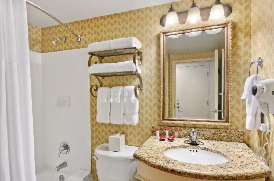 Gateway Hotel Dallas : Bathrooms in Every Room