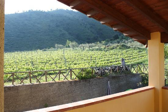 Patti, Italie : View from the window