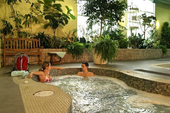 Hotel L'Oiseliere - St-Nicolas: Spa intérieure