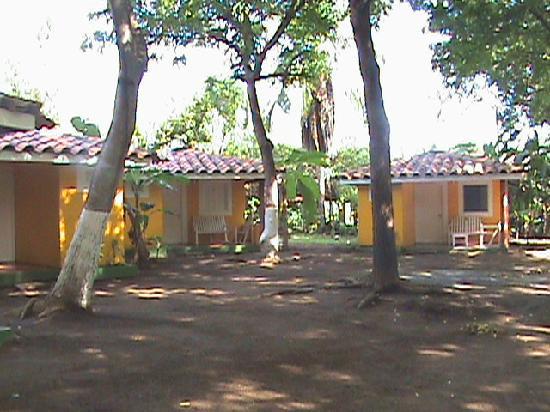 Chitre, Παναμάς: Vegetacion