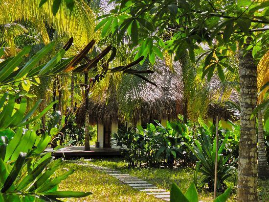 Merecumbe Hotel: jardines