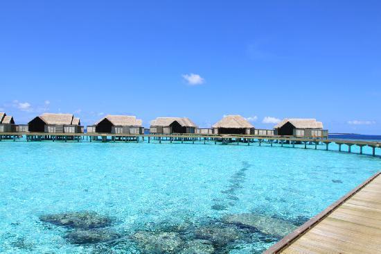 Bathroom Overwater Pool Villa Picture Of Anantara Kihavah Maldives Villas Kihavah Huravalhi