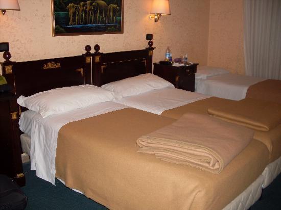 Albergo Carlo Magno Hotel: room