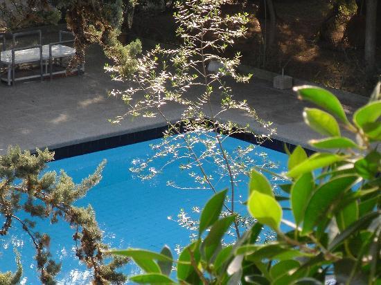 Houm Plaza Son Rigo: piscina en la parte interna