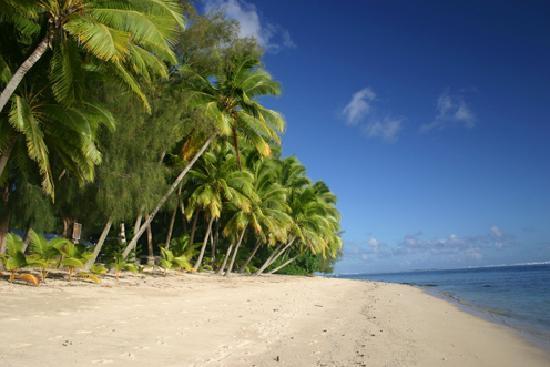 Sunhaven Beach Bungalows: Sunhaven's Beach