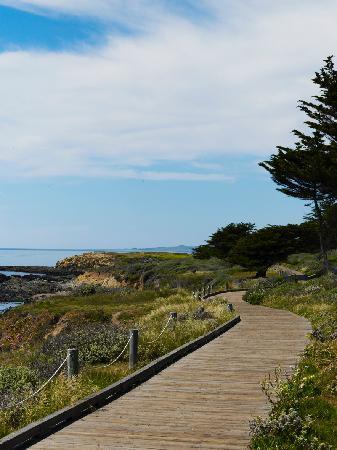 Sand Pebbles Inn: Boardwalk