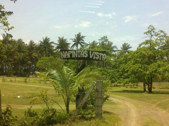 Napintas Vista: signage