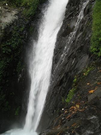 Singaraja, Indonesien: Gitgit Waterfall