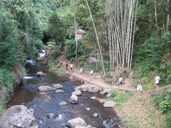 ซิงการาจา, อินโดนีเซีย: Gitgit Waterfall