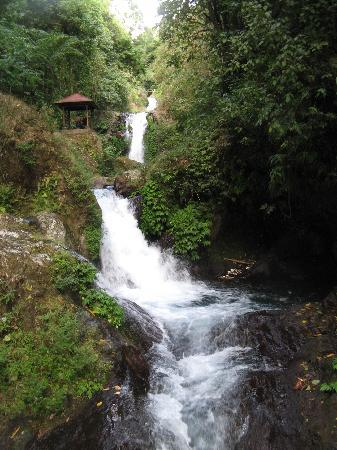 Singaraja, Endonezya: Gitgit Waterfall