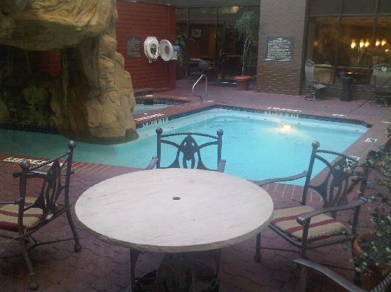 hilton garden inn austin downtownconvention center pool area actual size - Hilton Garden Inn Austin Downtown