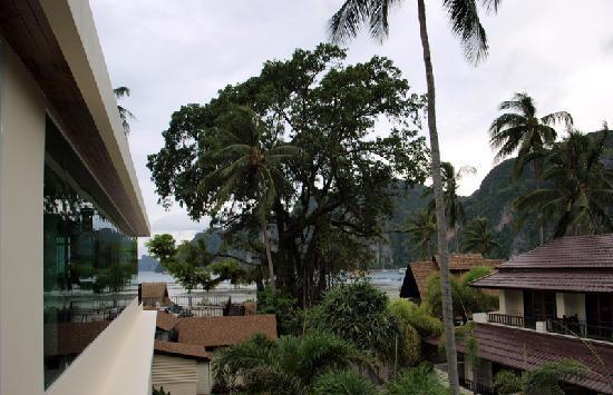 Phi Phi Banyan Villa: Hotel Exterior