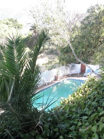 Mountain Magic Garden Suites: Swimming Pool