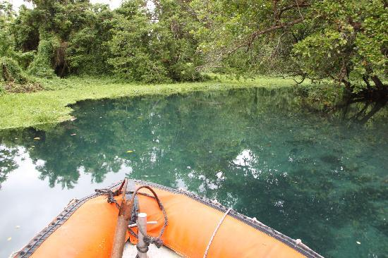 Matevulu Blue Hole: The Blue Hole, Espiritu Santo. From John Nicholls in Vanuatu