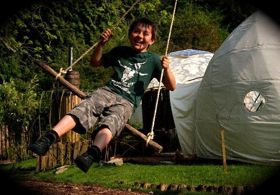 Dome Garden: Swing Lo!