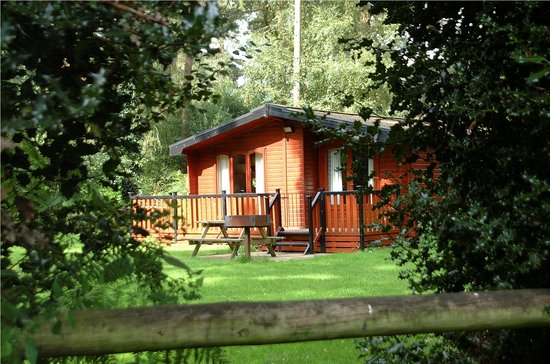 Fordingbridge, UK : Lodge in the forest