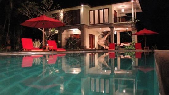 Suara Air Luxury Villa Ubud: The pool at night