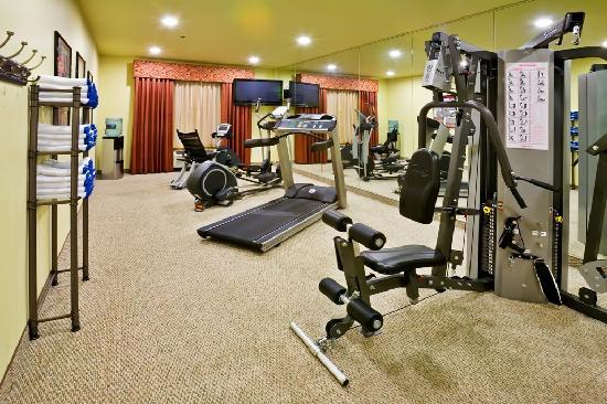 Holiday Inn Hotel & Suites McKinney - Fairview: Enjoy a workout in our 24-hour Fitness Center