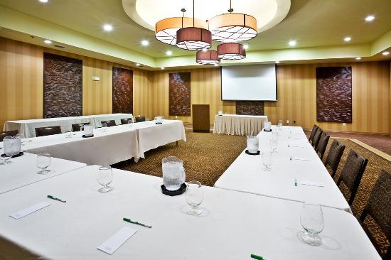 Holiday Inn Hotel & Suites McKinney - Fairview: Throckmorton Ballroom boasts conference space for up to 110 guests