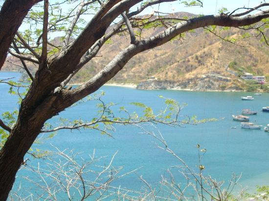Hotel Cactus Taganga: LA BAHIA