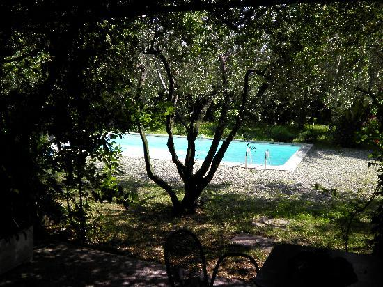 Logis Le Clos des Souquets : Pool from room terrace