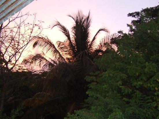 Farm Peace & Love: sunset from the cabana
