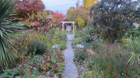 Hartley Homestead Boutique Bed and Breakfast : Autumn Colours