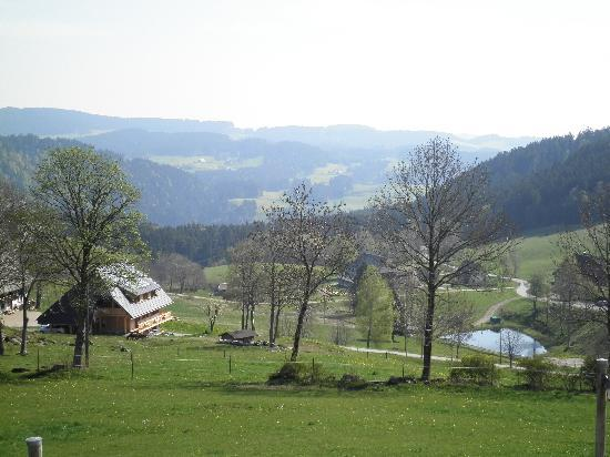 Hinterzarten, Tyskland: View from balcony