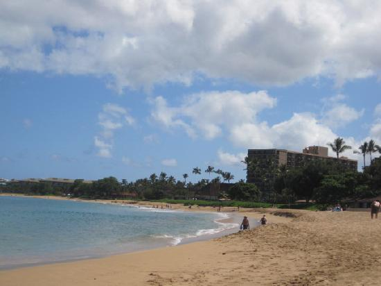 Kaanapali Ocean Inn: Beach at Royal Lahaina