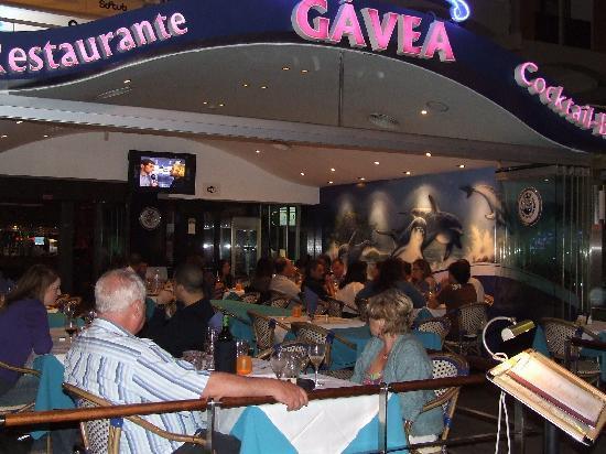 Gavea : A Gávea Marina de Vilamoura Algarve