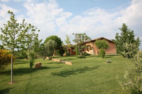 Agriturismo Poggio di Maremma: garden