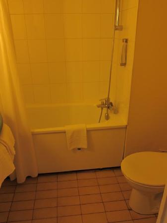 Ibis Grenoble Centre : Ibis Bathroom