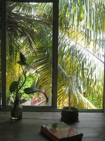 Arabian Soul: Blick aus unserem Fenster