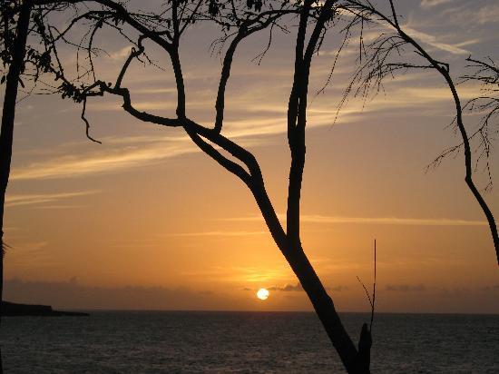 Paradisus Rio de Oro Resort & Spa: Sunset at the Paradisus