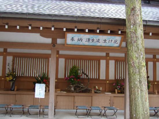 桜井市, 奈良県, ikebana
