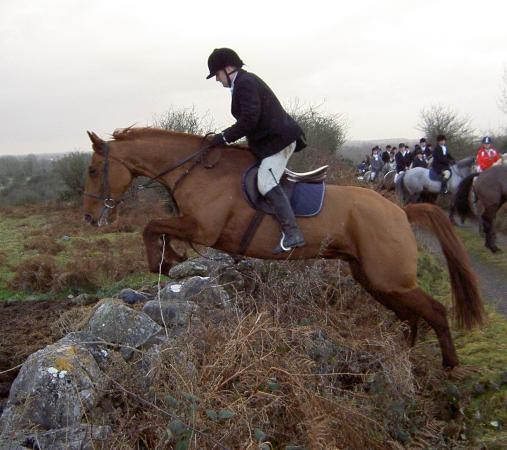 Flowerhill Equestrian Centre: Hunting in Ireland