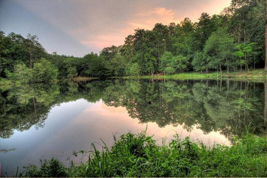 Panola Mountain State Park Picture Of Stockbridge
